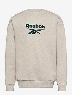 CL F VECTOR CREW - basic sweatshirts - chamel