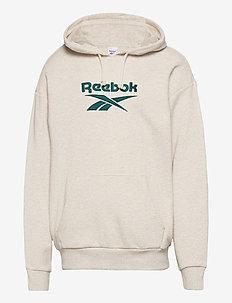 CL F VECTOR HOODIE - hoodies - chamel