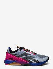 Reebok Performance - NANO X1 TR ADVENTURE - training schoenen - gabgry/brgcob/purpnk - 1