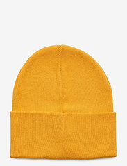 Replay - Cap - chapeaux - dk yellow - 1
