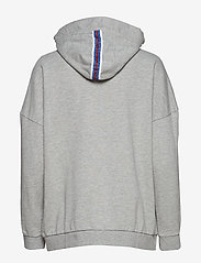 Replay - Sweatshirt - hoodies - light grey melange - 1