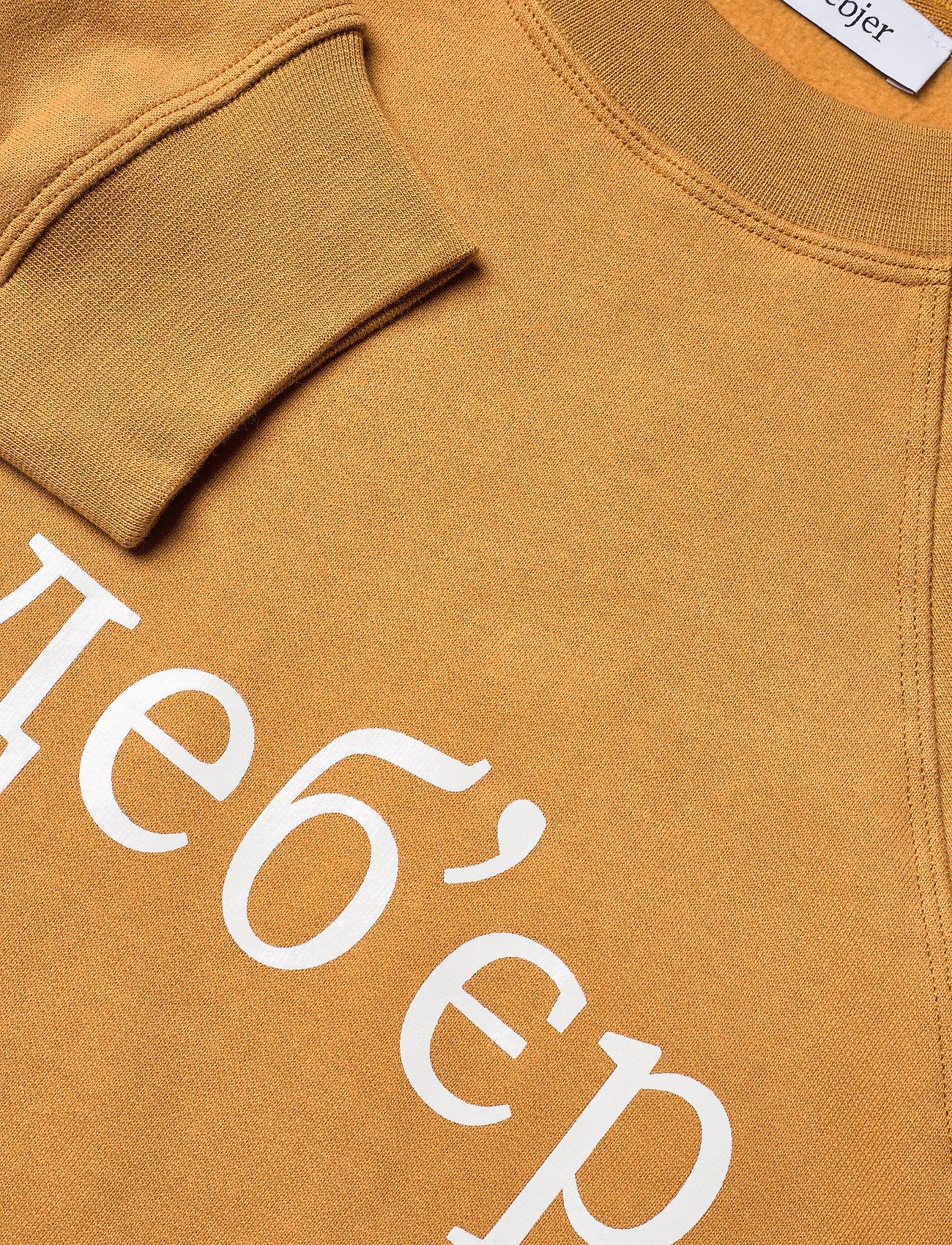 RODEBJER - RODEBJER JALENA - sweatshirts en hoodies - havanna brown - 2