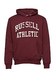 RU PULL OVER TACKLE TWILL HOODY - FIG