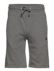 RU FORESTER-SEAM SHORT W R EMB - GREY MARL