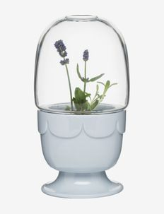 Greenhouse on foot with glass shade - ruukut - blue