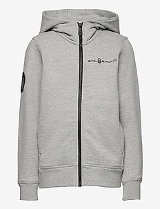 JR ANTARCTICA ZIP HOOD - hoodies - grey mel