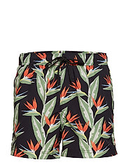 Mason swim shorts aop 6956 - NIGHT PARADISE