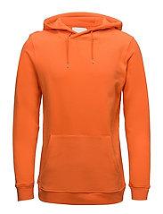Leeson hoodie 9461 - PUFFINS BILL