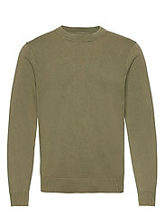 Ferris crew neck 11514 - DEEP LICHEN GREEN