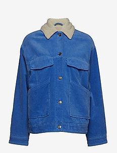 Venya jacket 10690 - BLUE BONNET