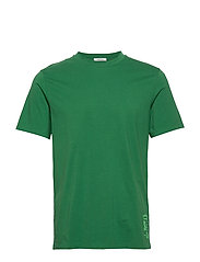 Classic crewneck tee in organic cotton jersey - FERN