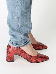 Shoe The Bear - ALLISON SNAKE - klassiset piikkikorkokengät - red - 0