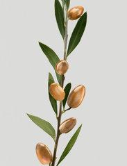 Shu Uemura Art of Hair - Silk Bloom Conditioner - balsam - clear - 4