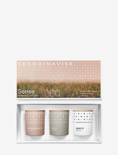 SENSE(Rosenhave, Ro, Lempi) 3x 65g mini candle TRIO set - doftljus - multi