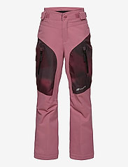 Skogstad - Gaustadblikk 2-layer technical ski trousers - schneehose - heather rose - 1