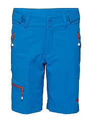 Hovde  Shorts - PRIMARY BLUE
