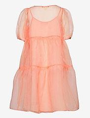 Soft Gallery - Heya Dress - kleider - tropical peach - 1