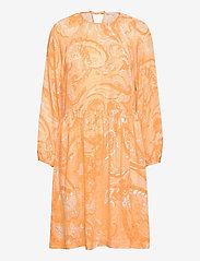 Soft Rebels - SRPennie Dress - sommerkjoler - paisley print - 0