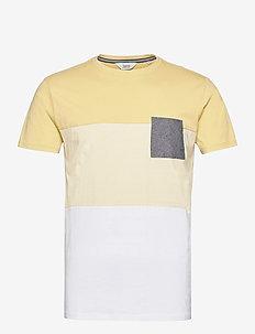 SDRiggin - basic t-shirts - jojoba