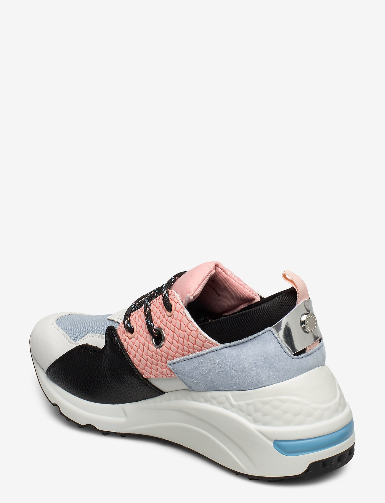 Cliff Sneaker (Blue/pink) - Steve Madden
