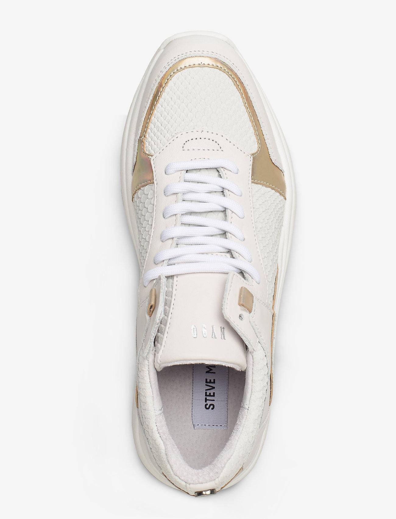 Flexy Sneaker (White Suede) - Steve Madden