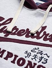 Superdry - COLLEGIATE VARSITY SWEAT DRESS - t-shirt dresses - ice marl - 2