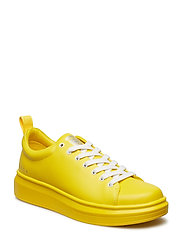Charlie - STRONG YELLOW