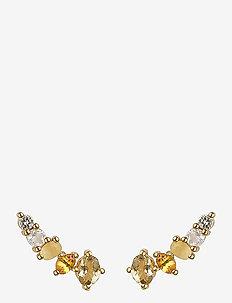 Dazzle Earrings Gold Champagne Quartz - stud oorbellen - gold