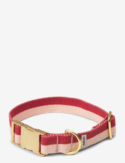 My collar - hundehalsbånd - red powder