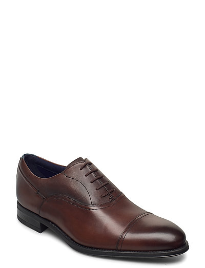 Sittab Shoes Business Laced Shoes Braun TED BAKER