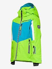 Tenson - Flexi Race - winterjassen - green - 2