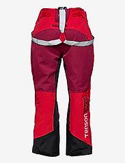 Tenson - Pow Race - skibroeken - red - 1