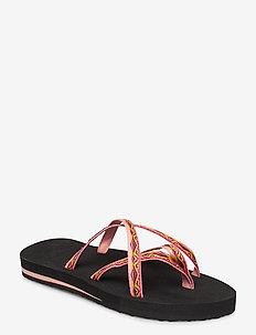 W Olowahu - flate sandaler - sari ribbon apricot blush