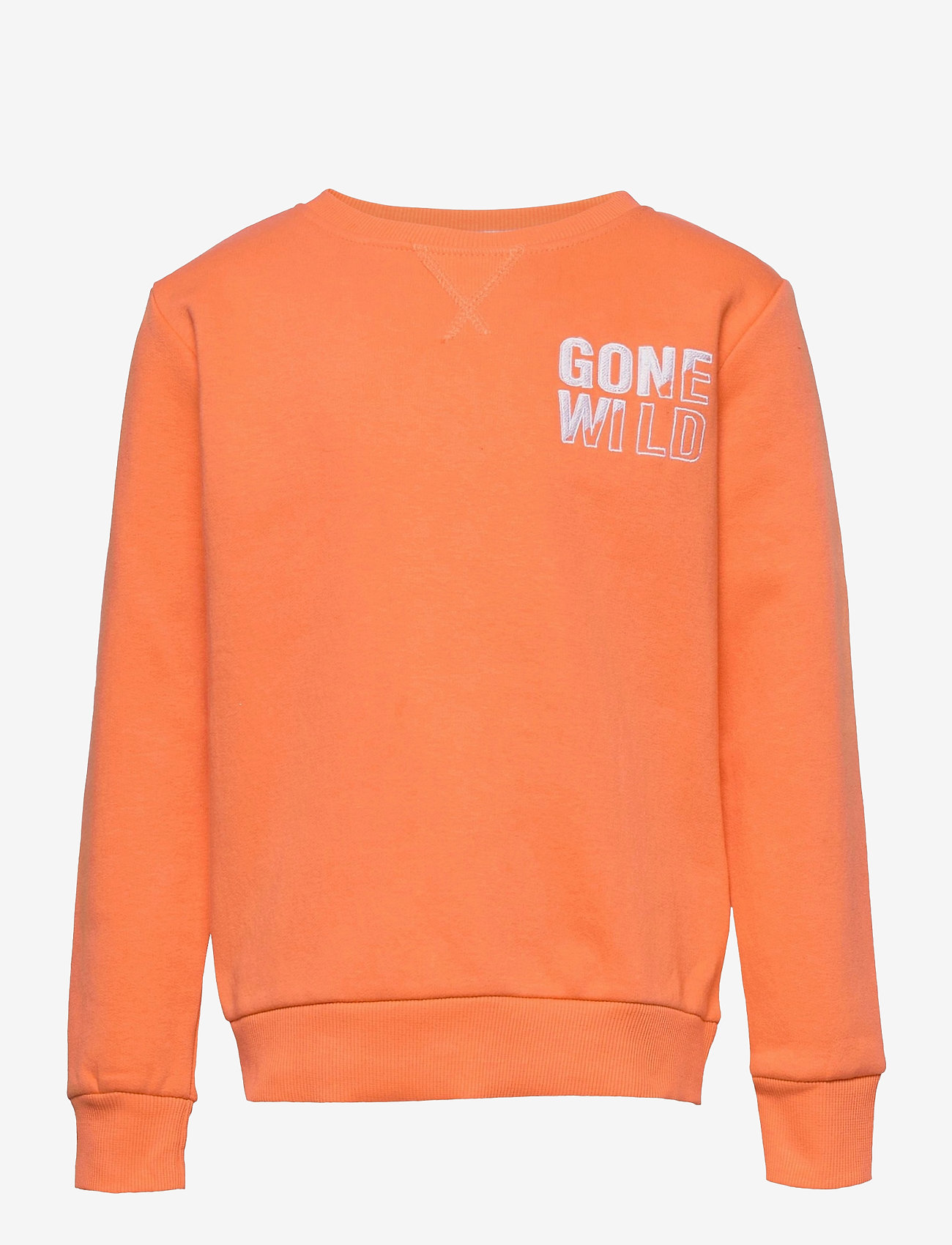 The New - TOBY SWEATSHIRT - sweatshirts - nectarine - 0