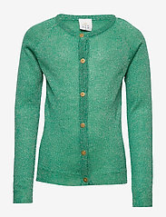 The New - AYA CARDIGAN - gilets - viridis - 0