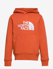 The North Face - Y DREW PEAK P/O HD - hoodies - burnt ochre - 0
