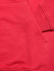 The North Face - M LT DREW PEAK PO HD - pulls a capuche - rococco red - 3