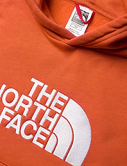 The North Face - Y DREW PEAK P/O HD - hoodies - burnt ochre - 2
