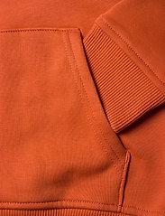 The North Face - Y DREW PEAK P/O HD - hoodies - burnt ochre - 3