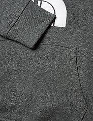 The North Face - Y DREW PEAK P/O HD - hoodies - tnf medium grey heather - 3