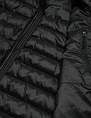 The North Face - M TREVAIL JACKET - vestes matelassées - tnf black-tnf black - 5