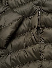 The North Face - W TREVAIL PARKA - kurtki puchowe - new taupe green - 4