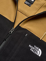 The North Face - M BLOCKED FZ HD - fleece midlayer - brtkhk/tnfblk - 2