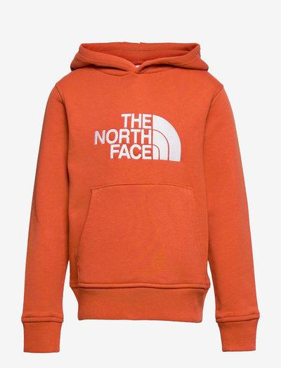 Y DREW PEAK P/O HD - hoodies - burnt ochre