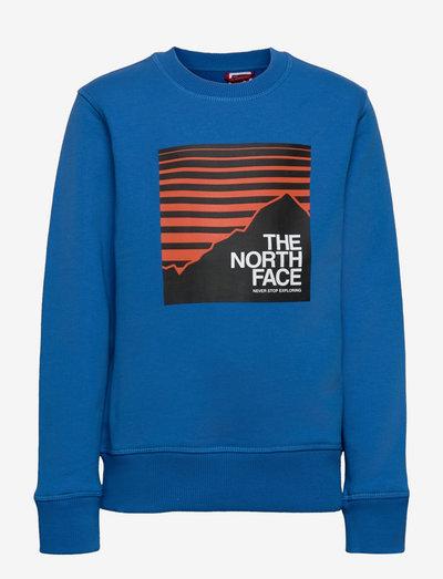 Y BOX CREW - sweaters - hero blue