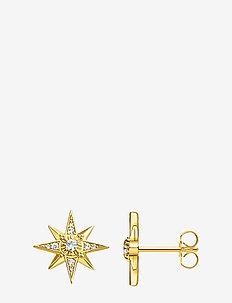 ear studs star gold - Ørestikker - gold