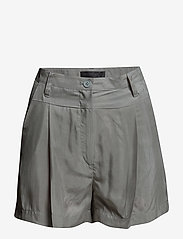Tiger of Sweden Jeans - HORIZON - casual shorts - green mist - 2