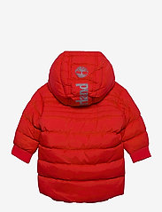 Timberland - PUFFER JACKET - puffer & padded - bright red - 1