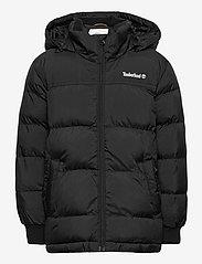 Timberland - PUFFER JACKET - puffer & padded - black - 0