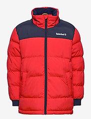 Timberland - PUFFER JACKET - dunjakker & forede jakker - bright red - 2
